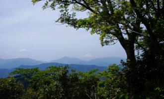 高尾山の風景写真